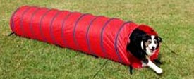 Dog agility tunnel.