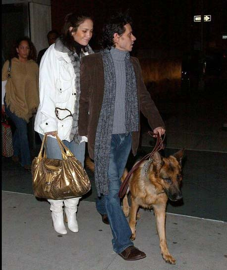 A celebrity couple with their executive level protection dog.