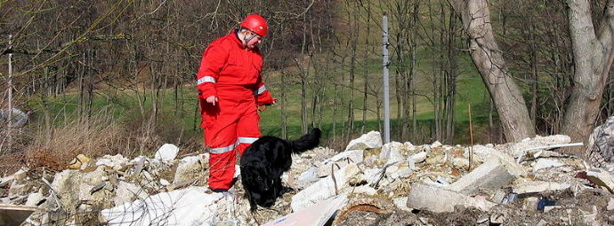 Search and rescue dog training with handler searching for a buried person among building rubble.